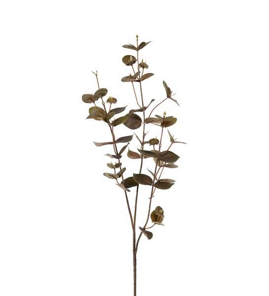 Eucalyptus (grønn 70 cm)